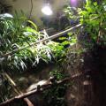 LED Strahler / Vergleich