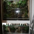 Terrarium im Regal