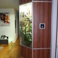 2. Terrarium für Wasseragamen