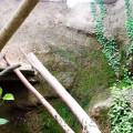 Bilder vom Hypertufa am 12.11.2009