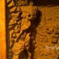 terrabau23