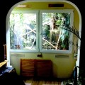 Mein Terrarium