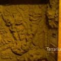 terrabau21